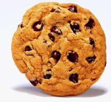 """The required anti-forgery cookie """"__RequestVerificationToken"""" is not present."""